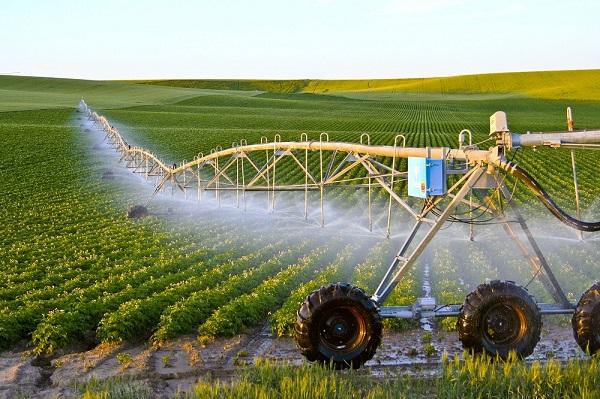 Teen có nên học ngành nông nghiệp không?